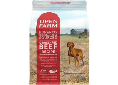 Grain Free for Dogs