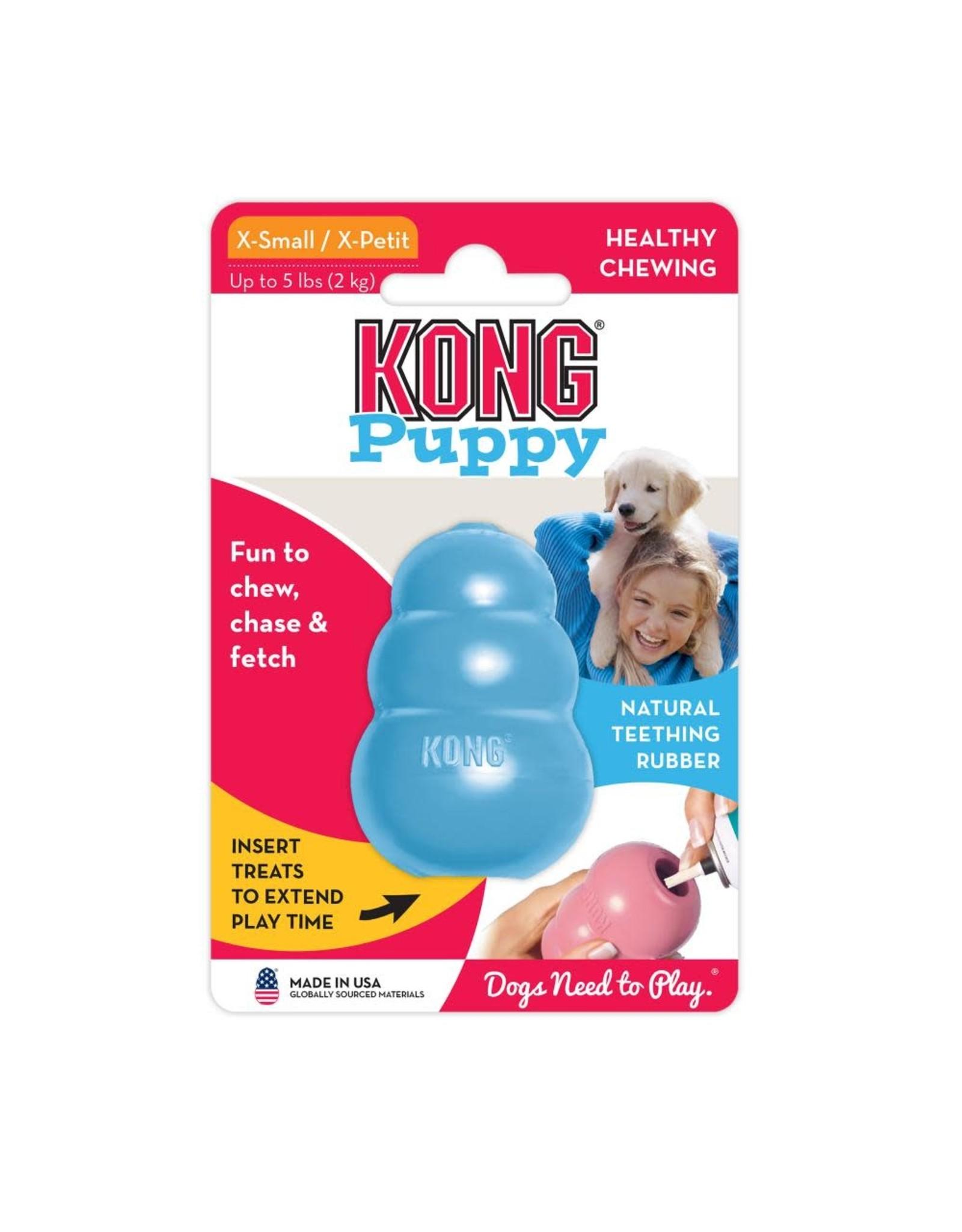 Kong Kong Puppy