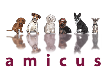 Horizon Amicus for Small Breed Dogs