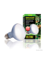 EX - Exo Terra Exo Terra Daylight Basking Spot Lamp