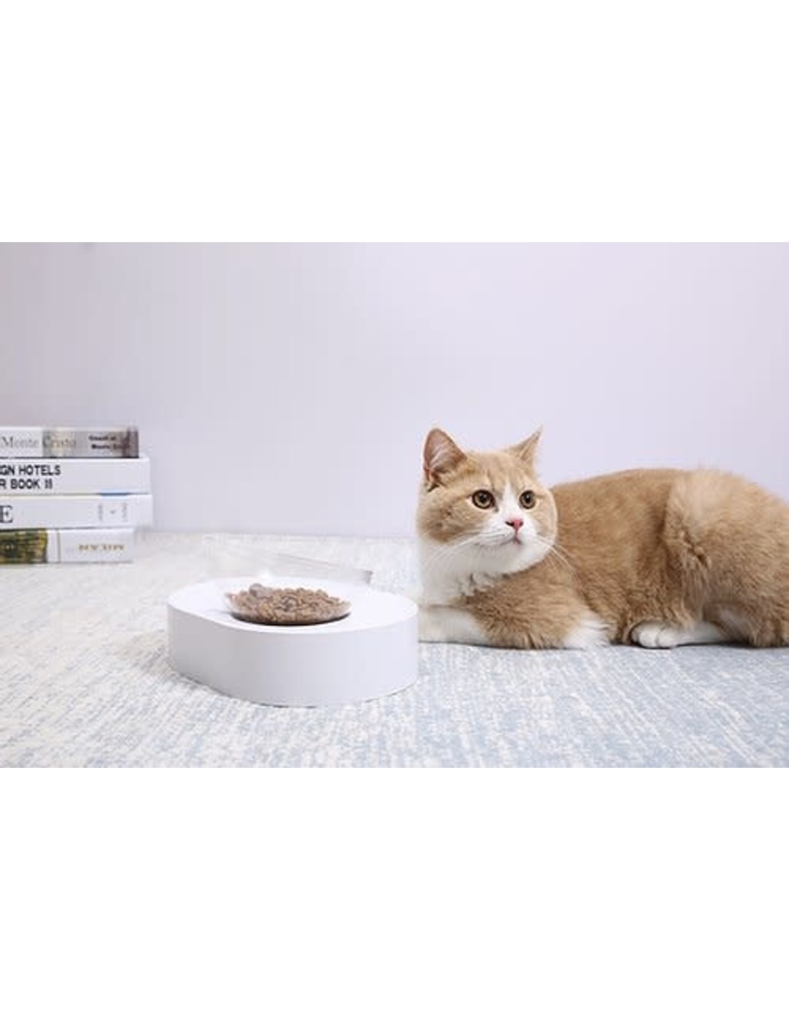 Instachew PETKIT Fresh Nano Cat Bowl Single