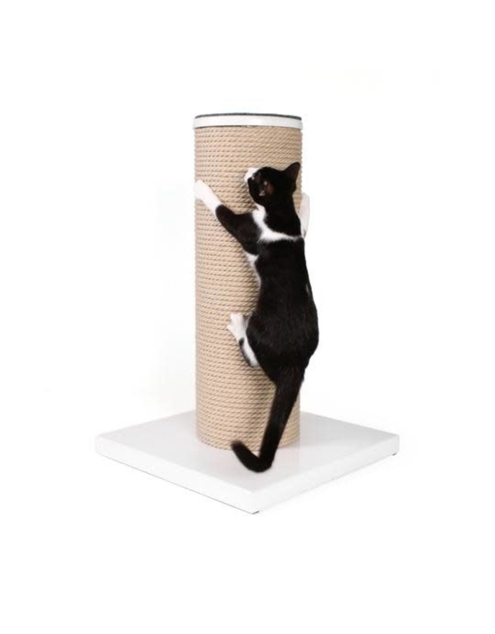 HAUS PANTHER HAUSPANTHER MAXSCRATCH CAT POST & PERCH WHITE