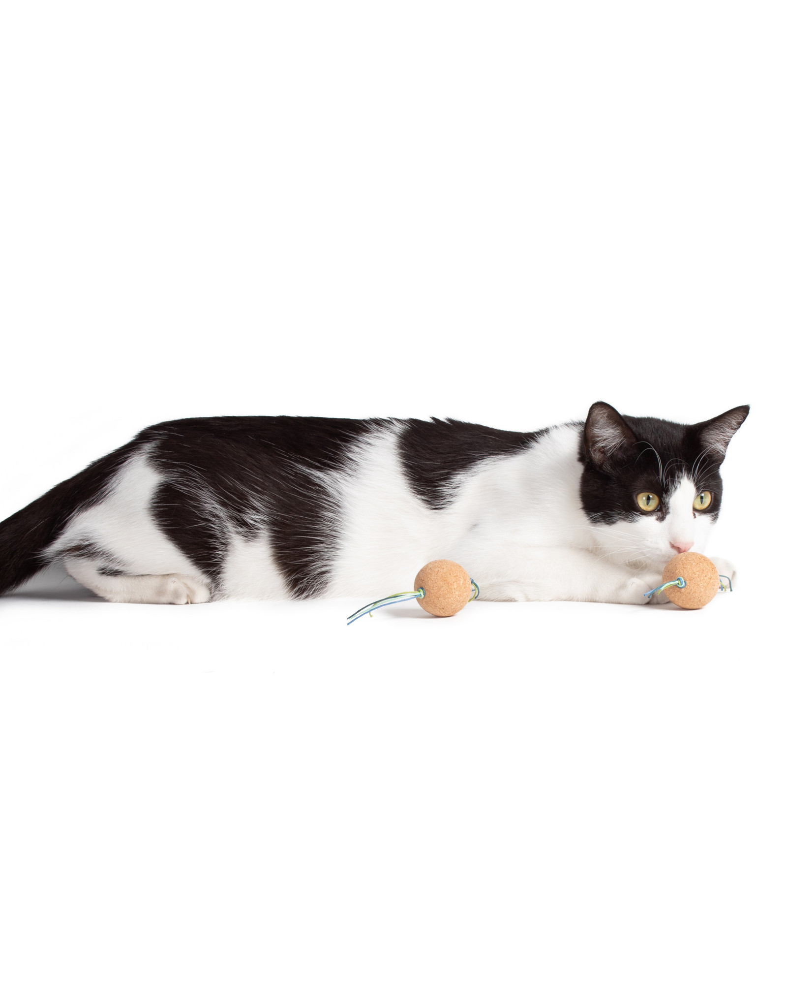 HAUS PANTHER CORK BOMBS CAT TOY ZEST