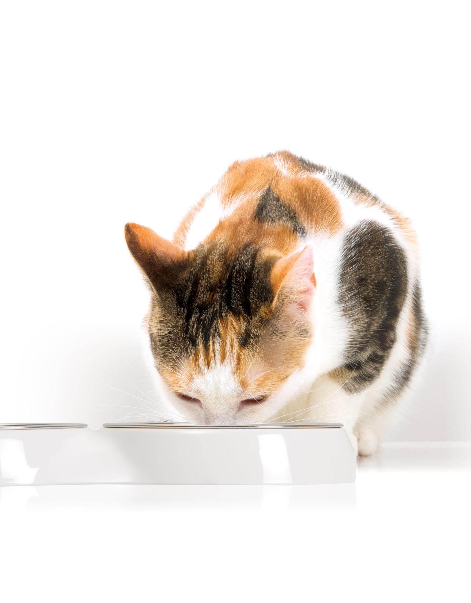 CT - Catit 2.0 Catit Feeding Double Dish - White - 2 x 200 ml (6.83 fl oz)