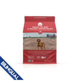 Open Farm Open Farm Ancient Grains Beef 22lb