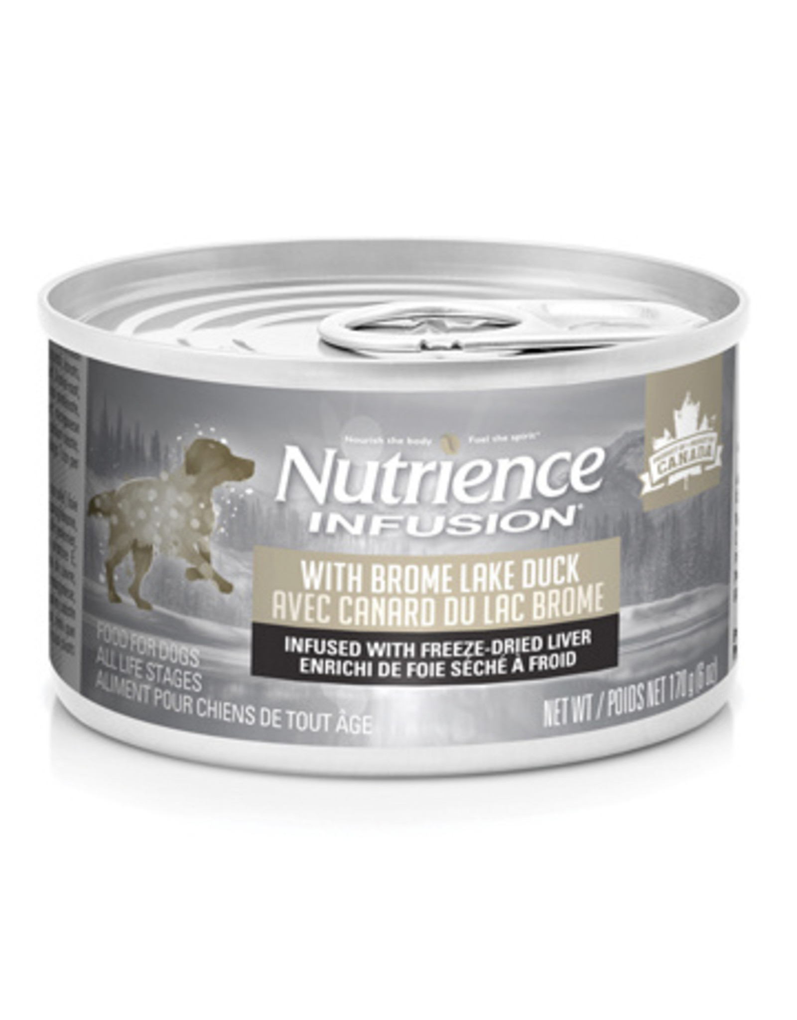 Nutrience Nutrience Dog Infusion Pate Canned Food 6 oz