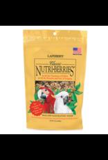 Lafebers Lafeber Nutri-Berries Macaw 10oz