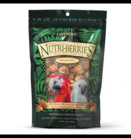 Lafebers Lafebers Nutri-Berries Large Parrot 284g