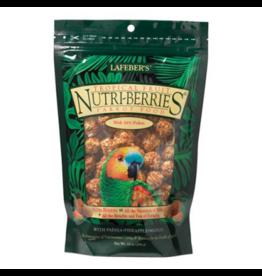 Lafebers LAFEBER Nutriberries Tropical Fruit - Parrot 10oz