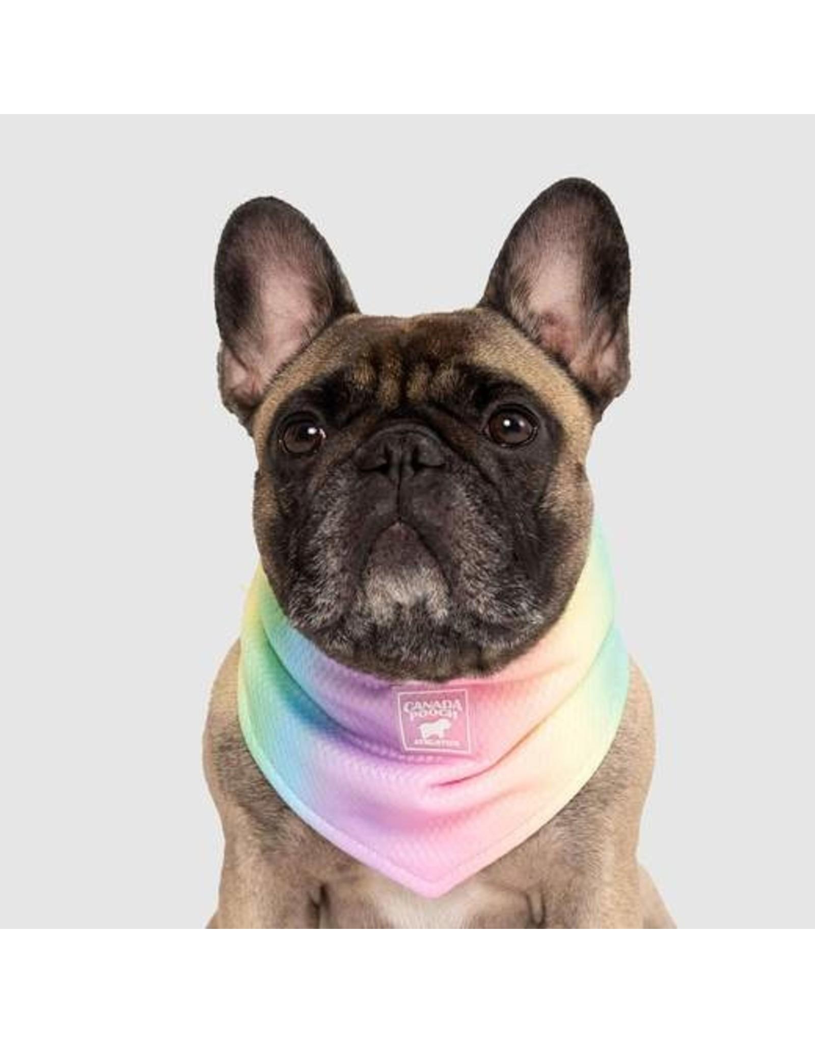 Canada Pooch Canada Pooch Chill Seeker Bandana Rainbow