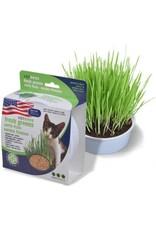 Van Ness Pet Products Van Ness Pureness Oat Garden Kit