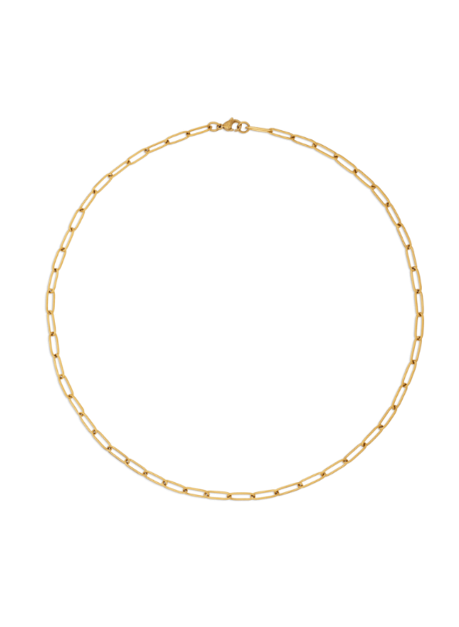 Gold Paperclip Chain Necklace - Jayden Necklace by Ellie Vail