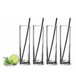 DANESCO ARTLAND Mojito Glasses & Straws S/4
