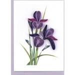 QGIFT Enc Iris