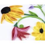 QCARD QCARD  Wildflower Birthday Blooms