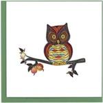 QCARD QCARD  Colourful Owls