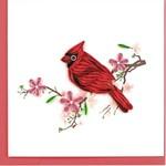 QCARD QCARD  Cardinal