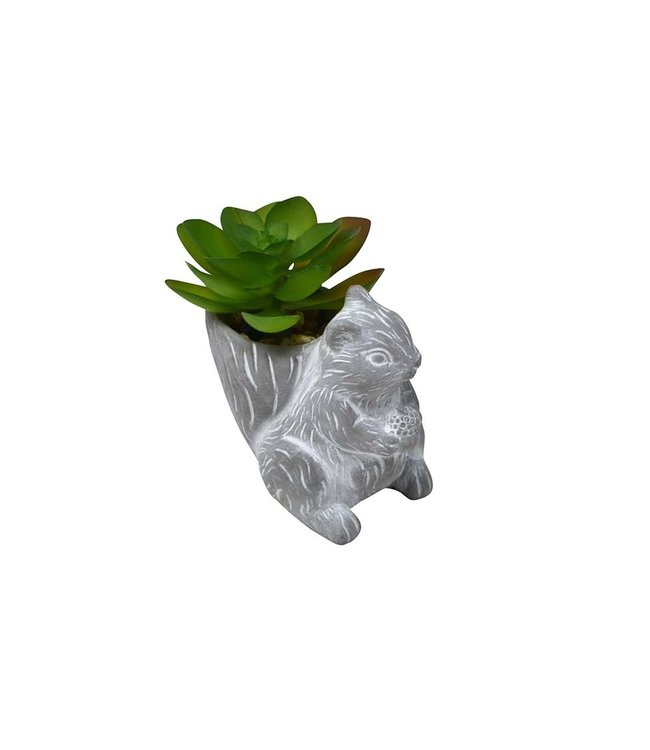 MINI SQUIRREL POT PLANT