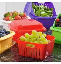 Gourmac/Hutzler Berry Box, Plastic