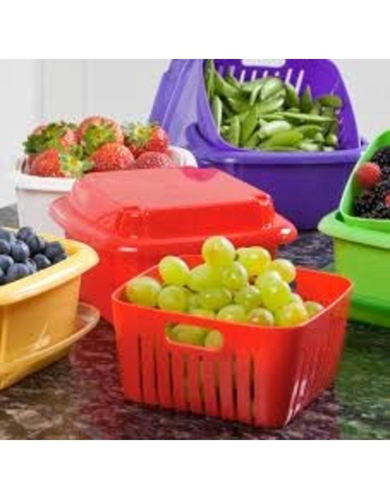 Gourmac/Hutzler Berry Box, Plastic/6