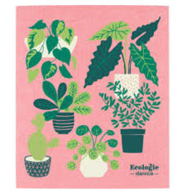 Now Designs Swedish Dish Let It Grow Plants now