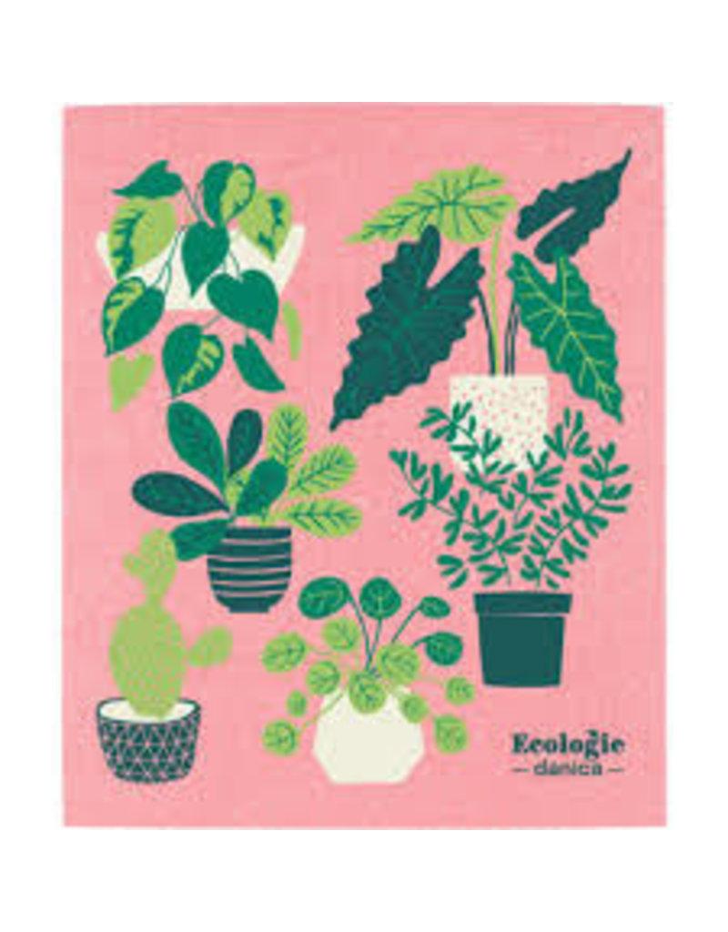 Now Designs Swedish Dish Let It Grow Plants now
