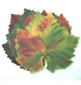 Harold Imports Sisson Parchment Leaves, Grape, set of 20