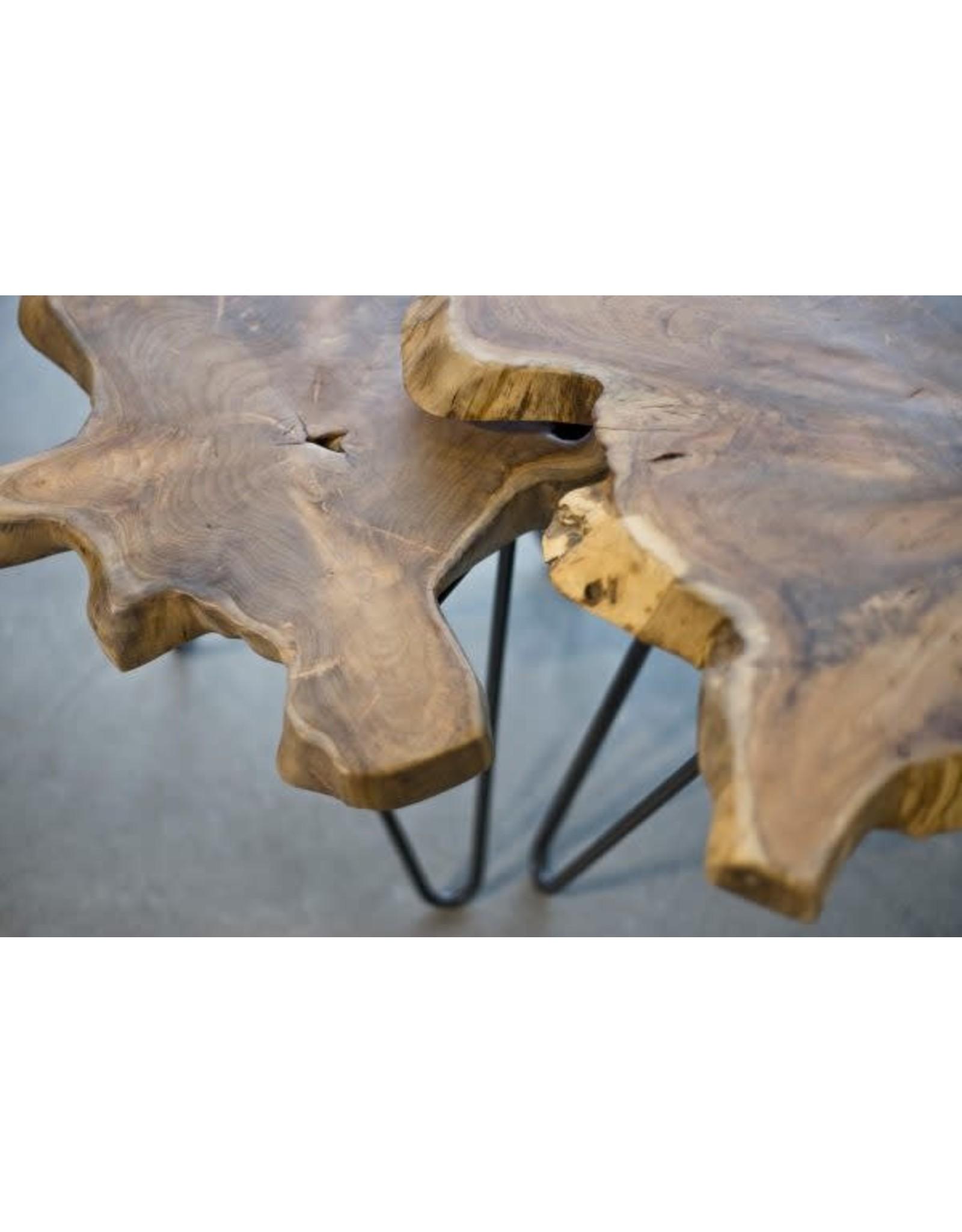 TCE Leo Nesting Tables (Set Of 2)