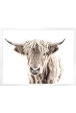TCE Highland Cow