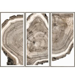 TCE Live Edge Triptych