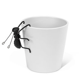 TCE Small Iron Hanging Ant