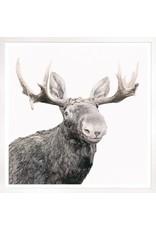 TCE Happy Moose