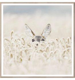 TCE Peekaboo Deer