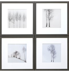 TCE Birch View Set of 4