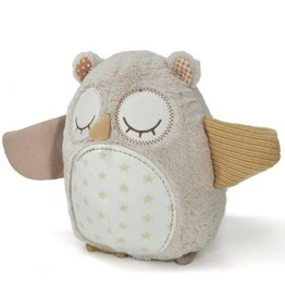 Cloud B Nighty night owl smart sensor