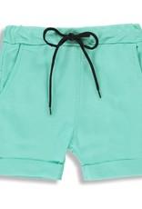 Birdz Long Shorts - Mint