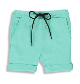 Birdz Long Shorts - Mint