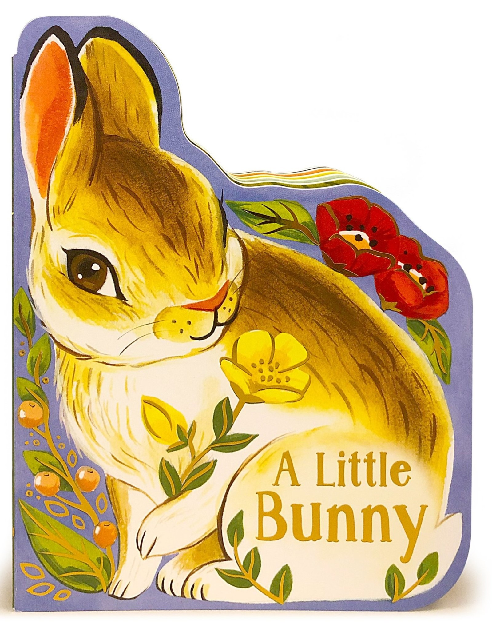 A Little Bunny board book