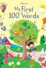 Usborne My 1st 100 Words