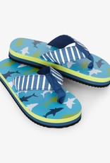 Hatley Great White Sharks Flip Flops