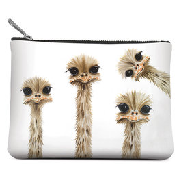 Small Zippered Pouch, Ostrich Family Reunion