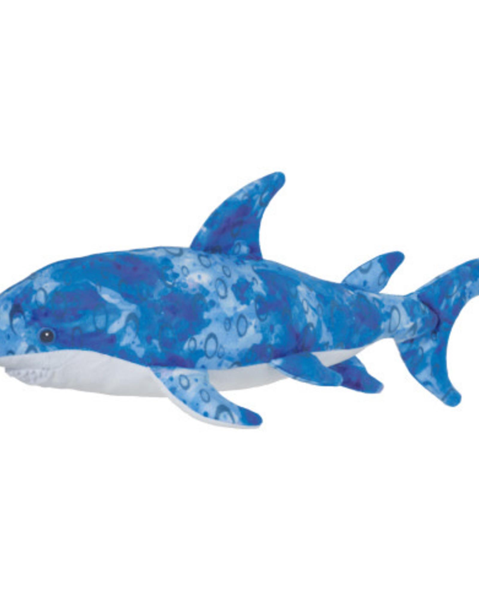 Douglas Reef Shark