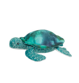 Douglas Coast Turtle