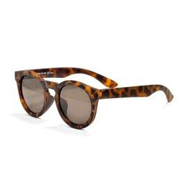 Real Shades Chill Sunglasses, Cheetah