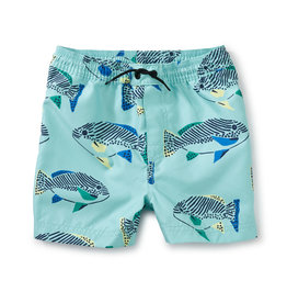 Tea Shortie Swim Trunks, Coastal Fish