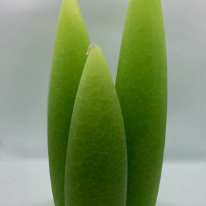 Barrick Design Candle Asymetrical Crackle Kiwi