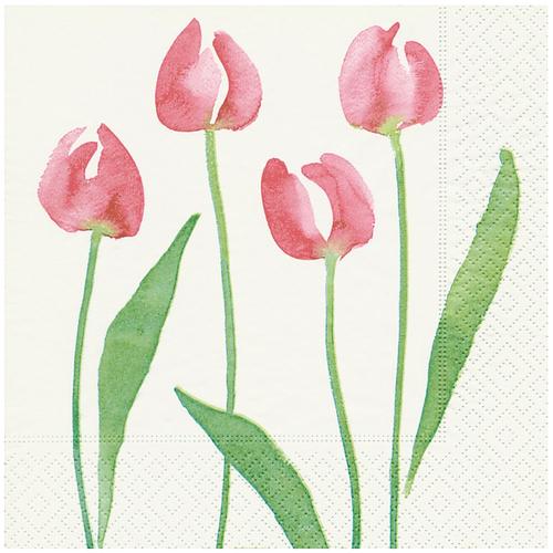 OCD Napkin Cocktail Paper Watercolour Tulip