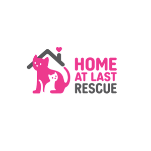 Carol's Nicetys DONATION - HOME AT LAST CAT RESCUE