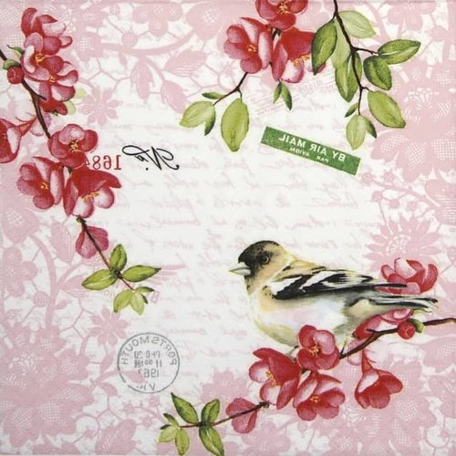 OCD Napkin Cocktail Paper Sweet Bird