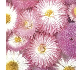 Napkin Lunch Paper My Sweet Pink Daisy